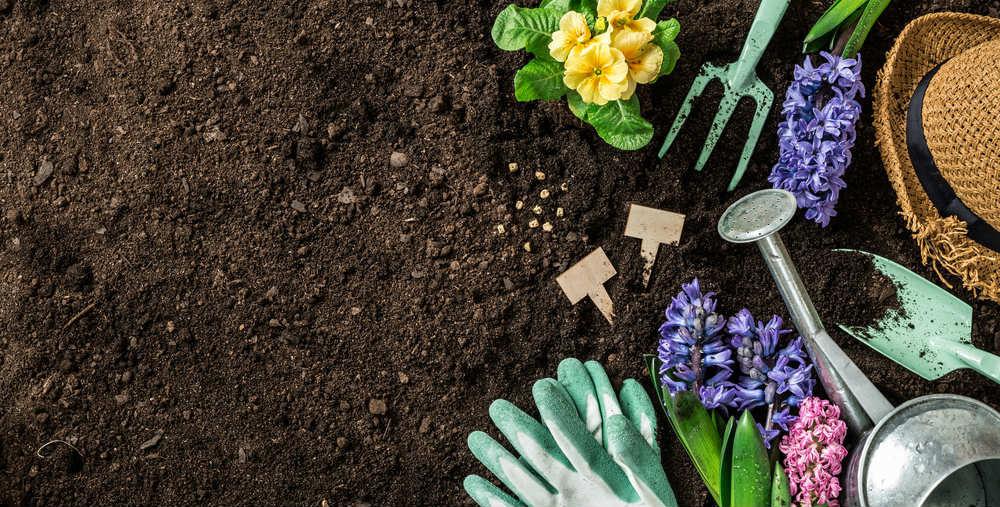 Terreno argilloso ed erbe infestanti, come risolvere