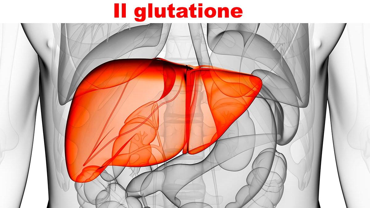 Glutatione perossidasi o gluthation, come funziona