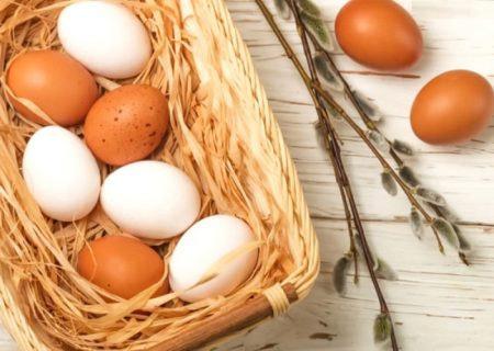Benefici di consumare Un uovo al giorno a colazione