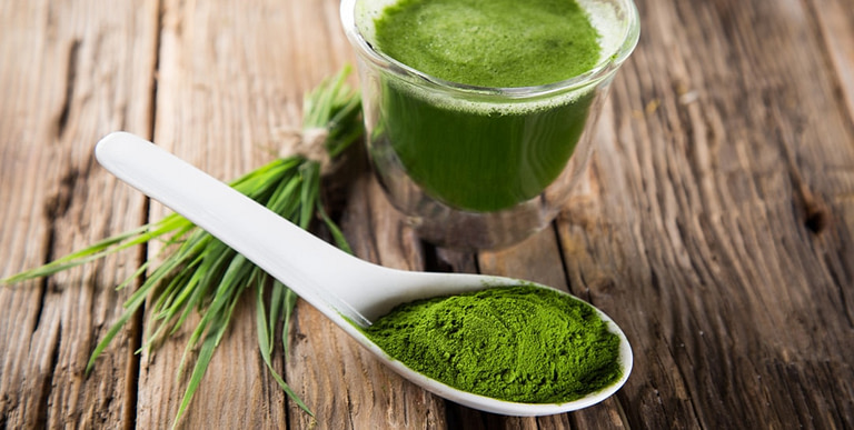 Il cibo degli dei, l'alga spirulina per dimagrire