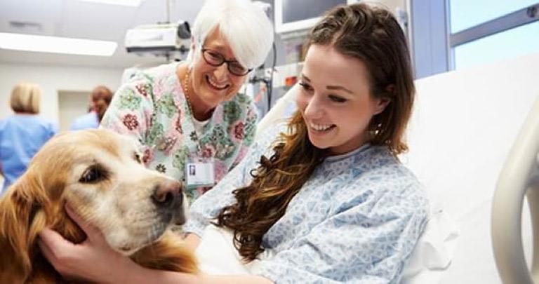 Conosci la zooterapia?