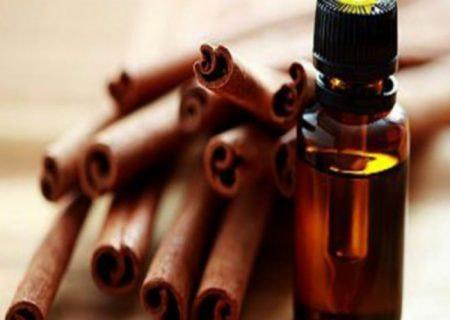 Scopri olio essenziale di cannella
